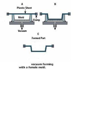 Vacuum Form Female